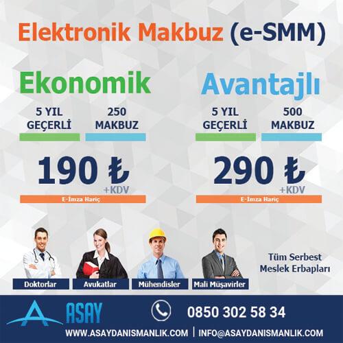 Elektronik Makbuz (e-SMM)